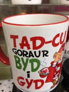 welsh mug 2