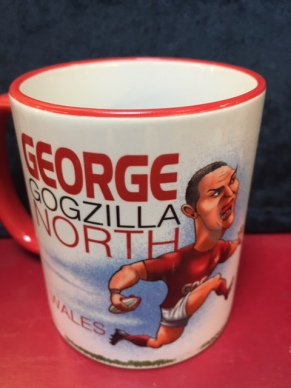 welsh north mug