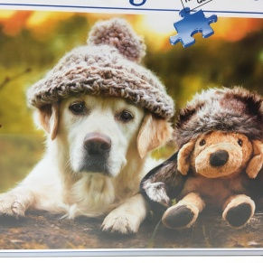 cute dog jigsaw puzzle