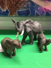 animal elephants